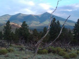 Imagine lines connecting the two outer slopes of the San Francisco Peaks.  That much has eroded away.