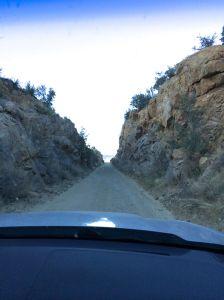 Sometimes a dirt road gets pretty narrow