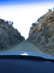 Sometimes a dirt road gets pretty narrow