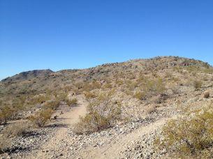 Dry Sonoran desert
