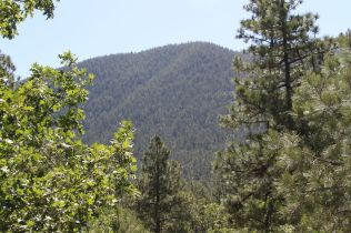 Rocky Ridge Glimpse of Mount Elden