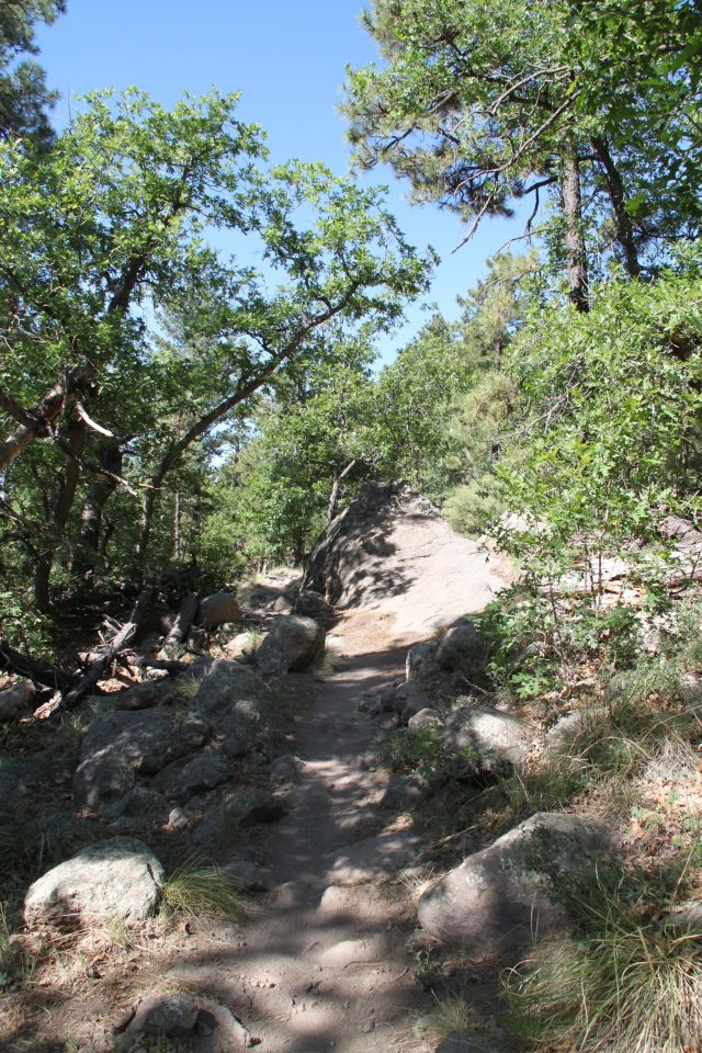 Rocky Ridge trail