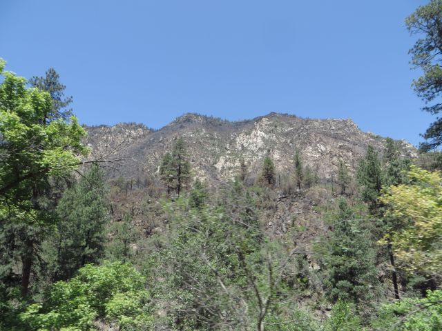 The fire moved up the steep, rocky hillsides and moved on.