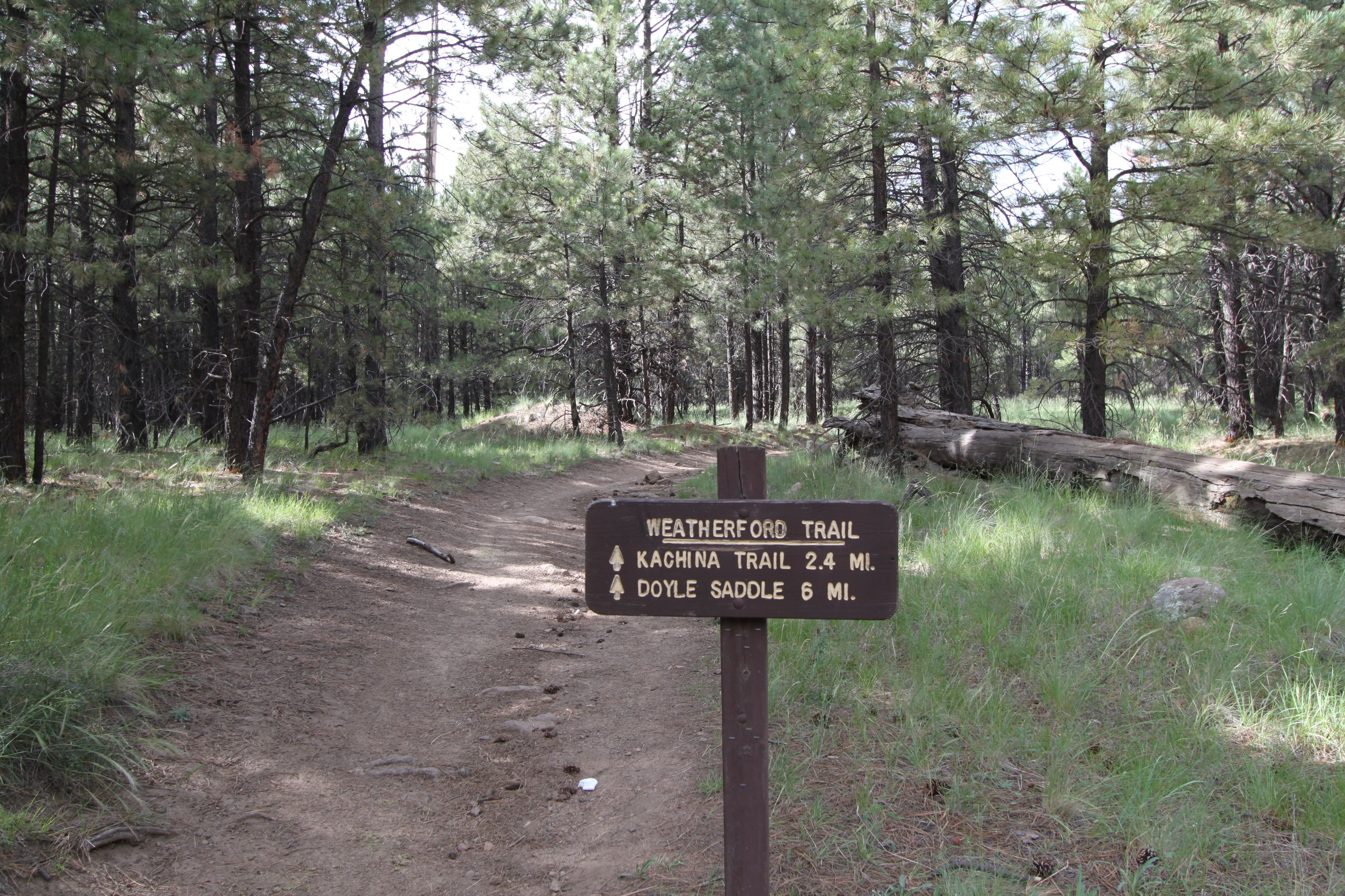 Hiking the Kachina and Weatherford Trails | Why is Arizona so