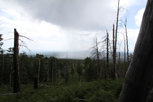 Kachina Trail, Rain coming!